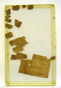 Papyrus non restauré