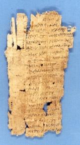 papyrus_liege
